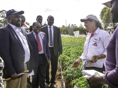 H.E the Deputy Governor of Uasin Gishu County Daniel K. Kiprotich Chemno and Dr. Oscar Mangenya Director State Department of Agricultural Research touring the demonstration plots