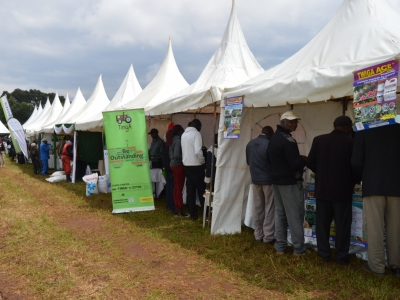 South rift region potato fair6