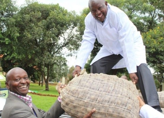 Left: Uasin Gishu County officials procuring seeds from Singus Enterprise. Right: Nyeri County officials receiving seed potato they bought from ADC Molo.
